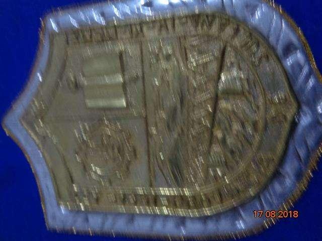 antiguo cuadro con el escudo de bronce de la municipalidad
