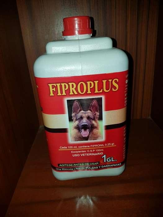 Fipronil Original para Perros Y Gatos