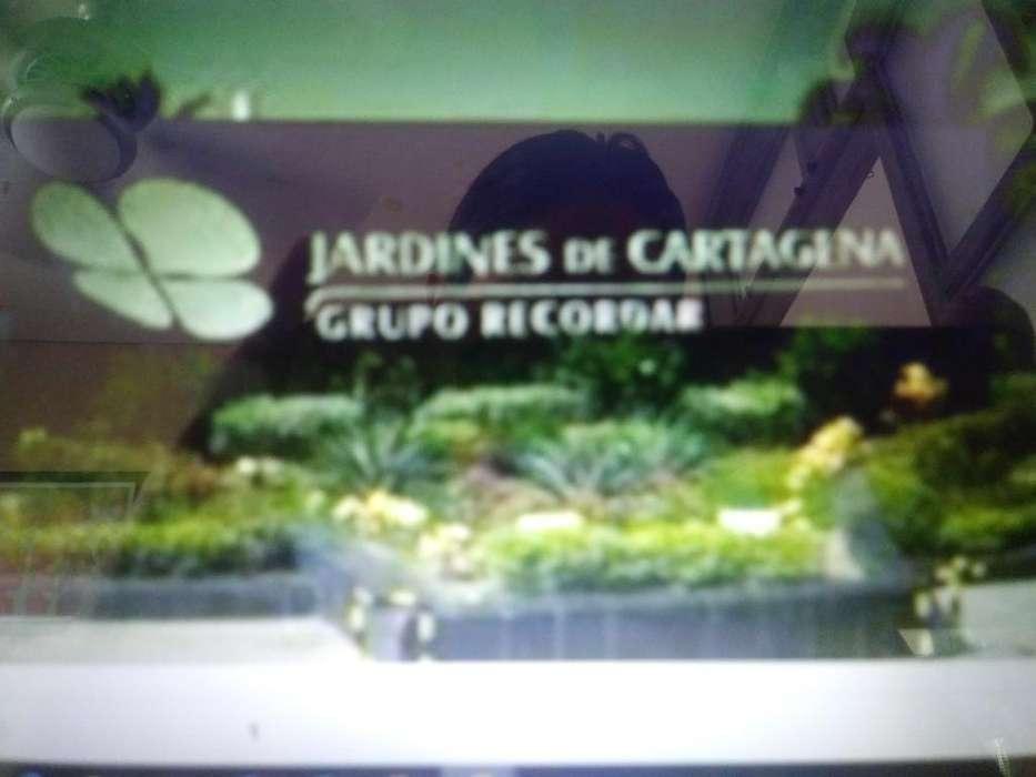 Lote Doble Jardines de Cartagena
