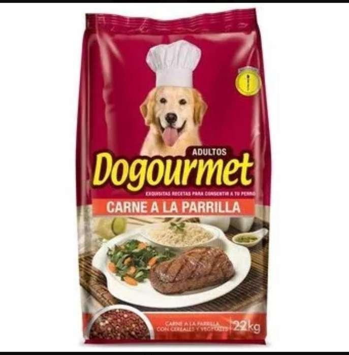 Alimento Perro Dogourmet