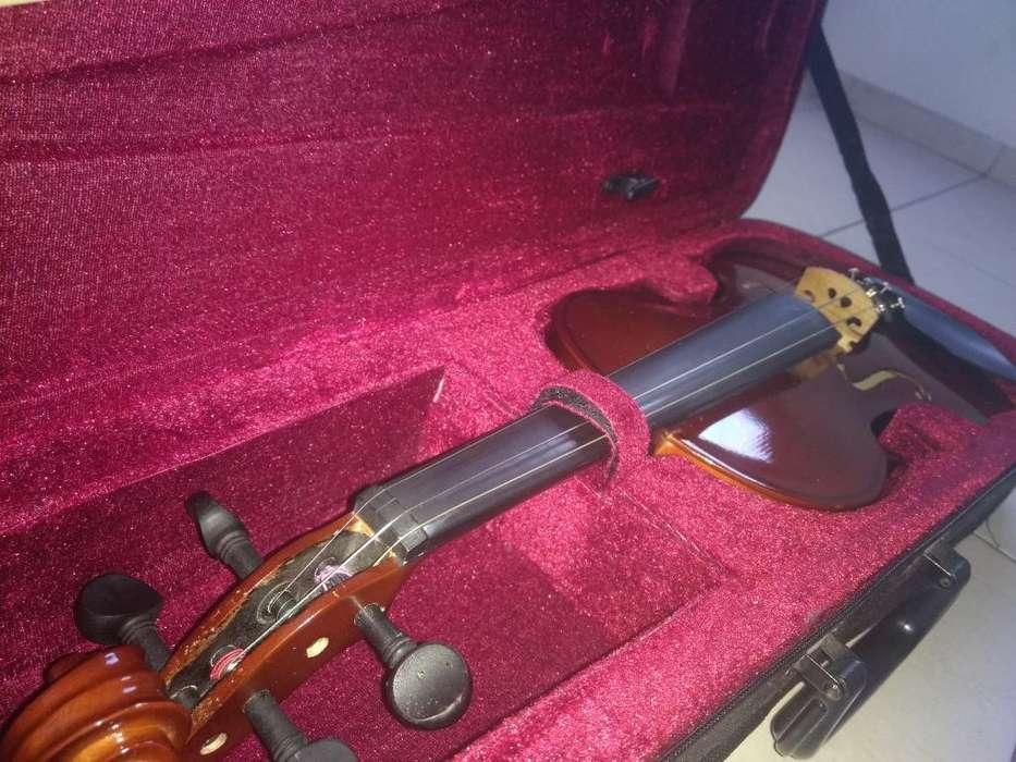 Violin Palatino de Estudio