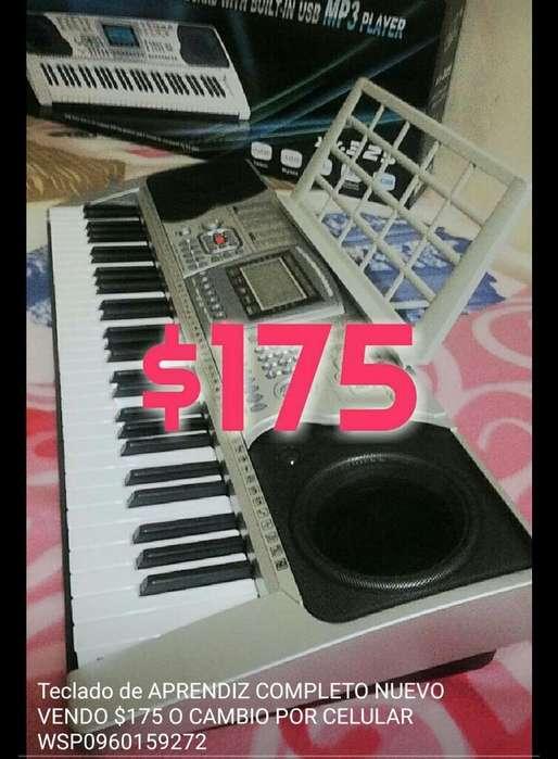Teclado Organo Piano Electronico Grande