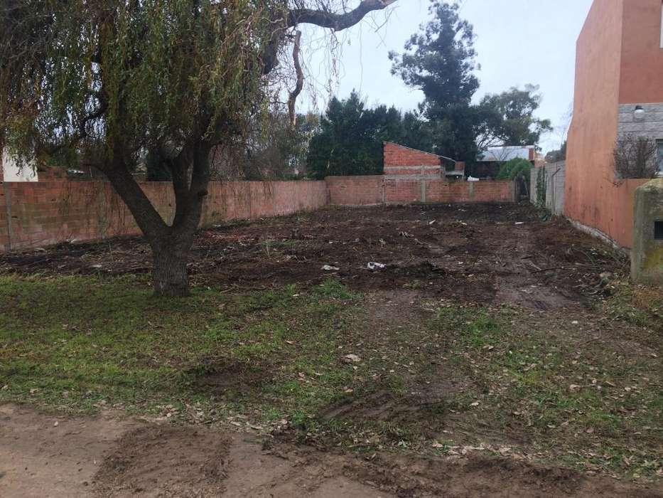 limpieza de terrenos,demoliciones, excavaciones