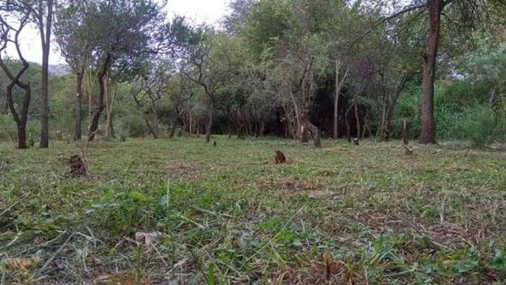 Vendo Terreno en Merlo San Luis 13x60