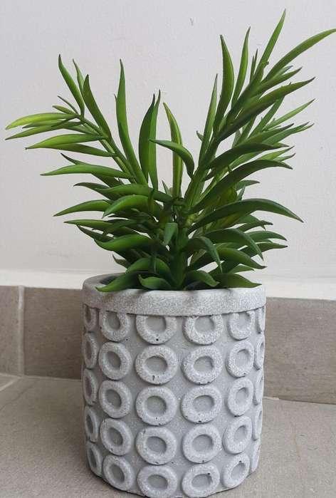 Maceta cilíndrica con planta decorativa