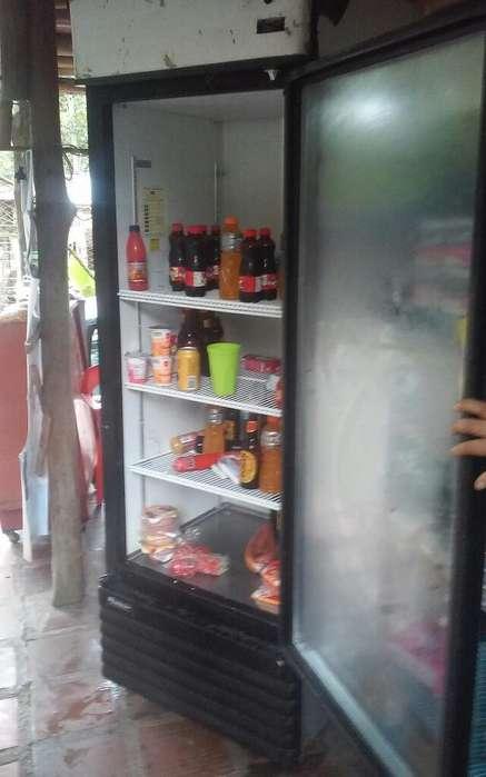 Lindo Refrigerador Exhibidor Vertical