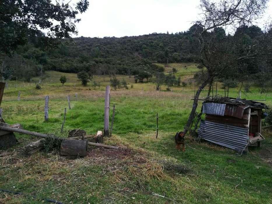 Venta Finca Guacheta Vereda Rancheria
