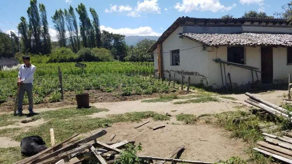 Terreno En Venta en Quito Sector Checa Cercano Al Parque Central Cod: V032