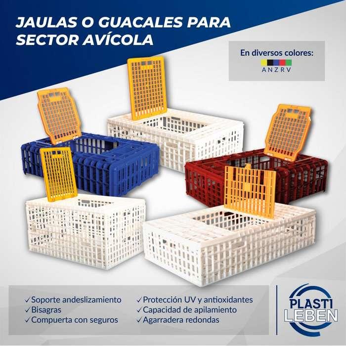 Jaulas Guacales Plástico Transporte De <strong>pollos</strong> Pavos Gallinas