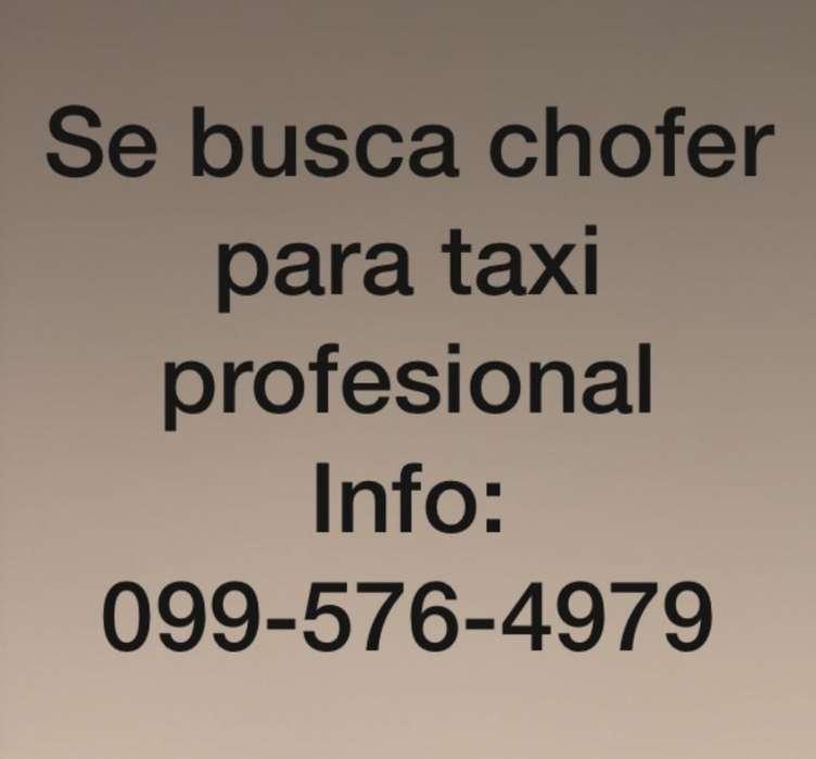Se Necesita Chofer para Taxi Legal.