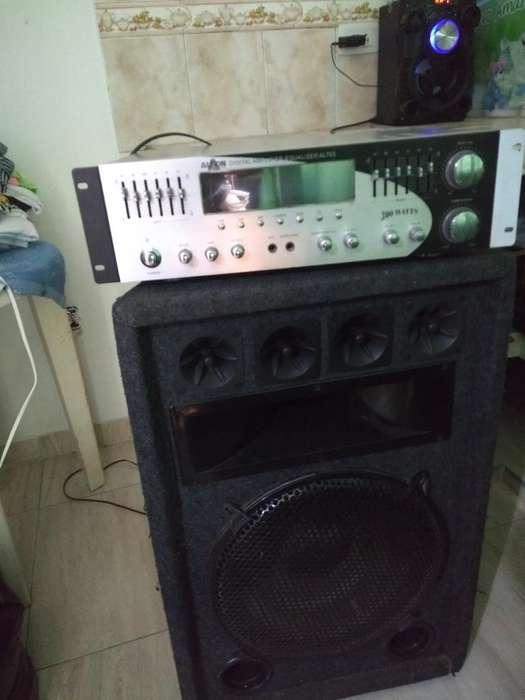Se Vende Amplificador 3176623118