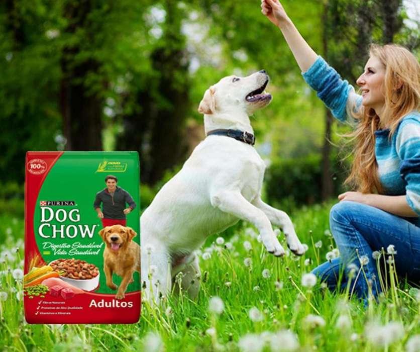 Dog Chow Adulto 17 Kg Raza Grande