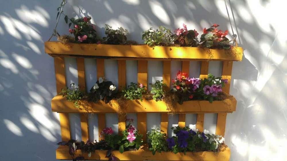 Jardin Vertical de Madera con Plantas