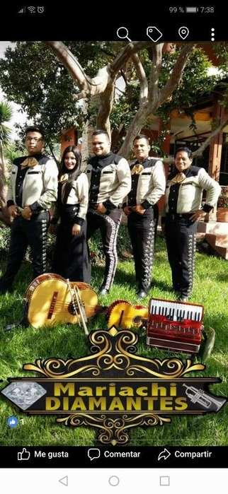Mariachi Quito Un Show Diferente 35usd
