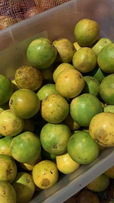 Bolsa de Naranaja 10 Kg