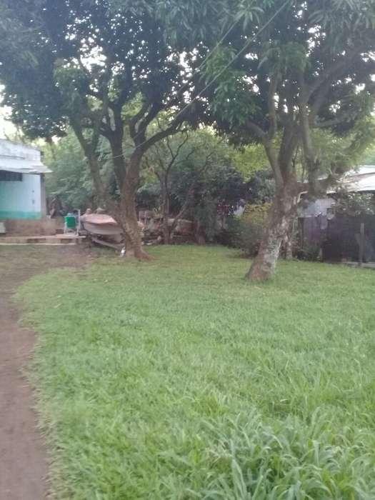 Terreno con Casa 12.50 por 50 de Fondo