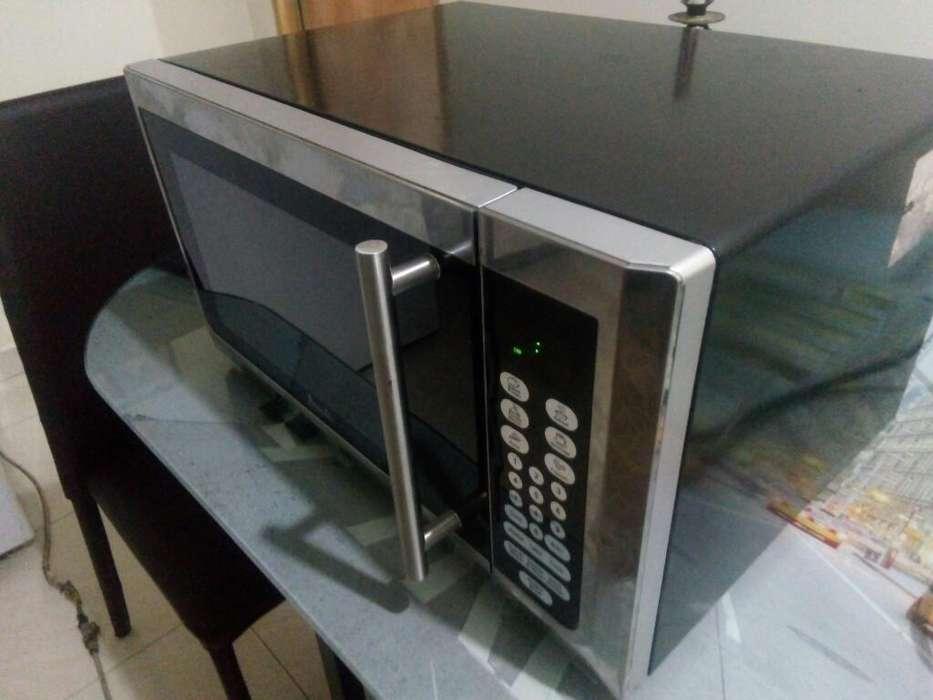 Microondas Metalizado Grande