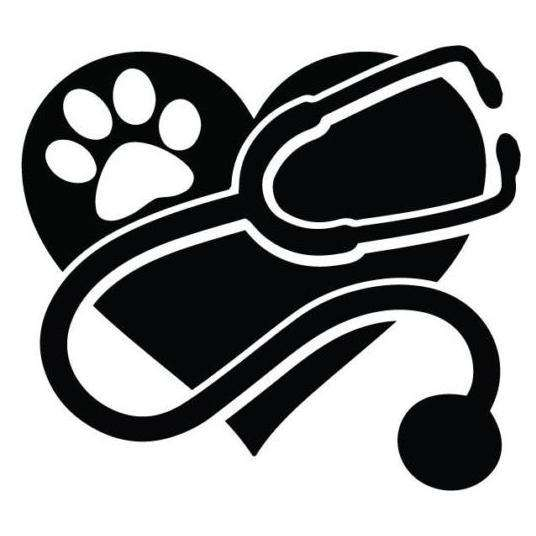 SERVICIO <strong>veterinario</strong> 24/7 a domicilio.