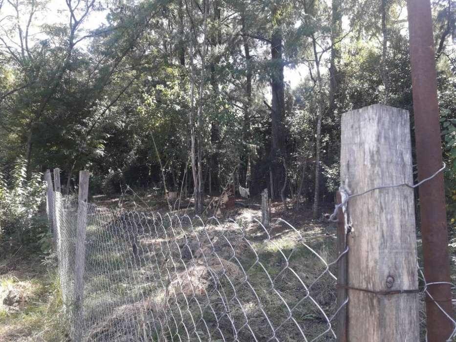 Vendo Terreno 10 X 42 Zona de Quintas