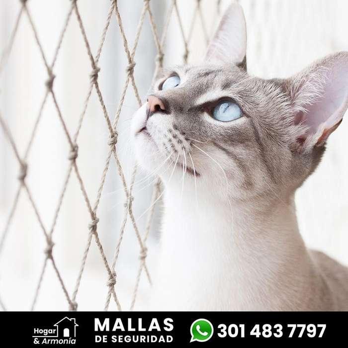 Mallas de seguridad (Mascotas)