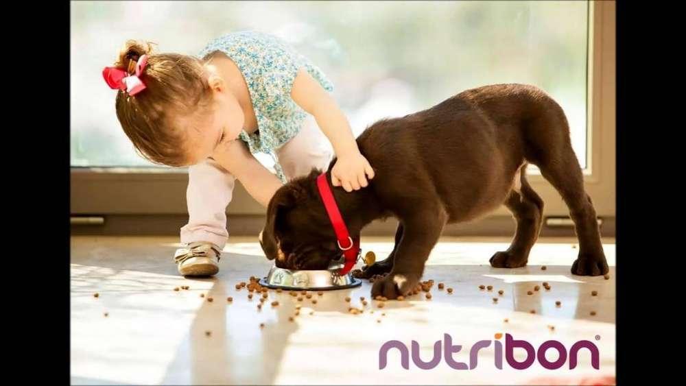 Alimentos para Mascotas Nutribon