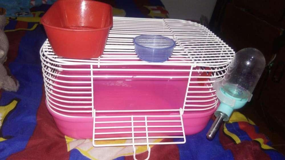 Jaula para Hamster en Excelente Estado
