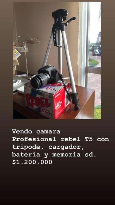 Camara Profesional Rebel T5