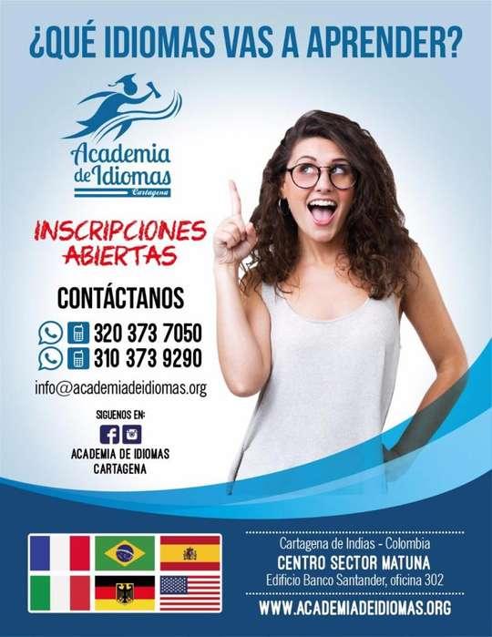 cursos y capacitaciones en idiomas, Ingles, Francés, Portugués, Italiano, Alemán.