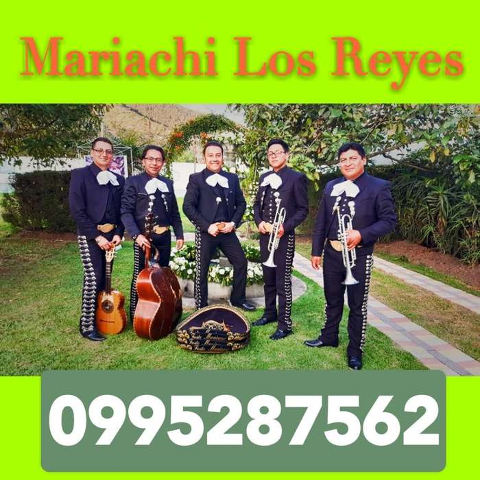 Precios de Mariachis en San Pedro Fajard
