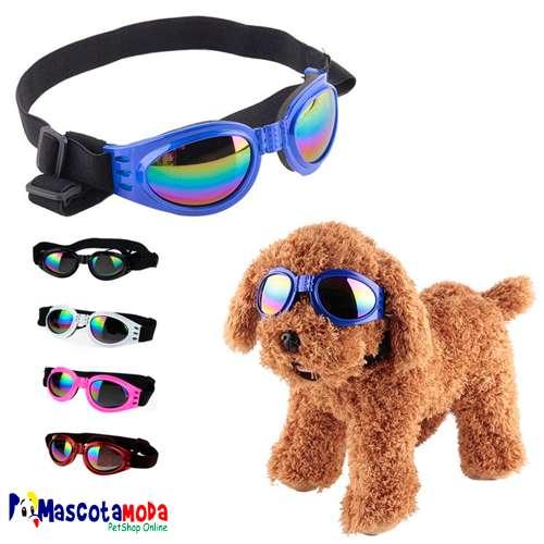 Gafas de sol para perros de todos los tamaños