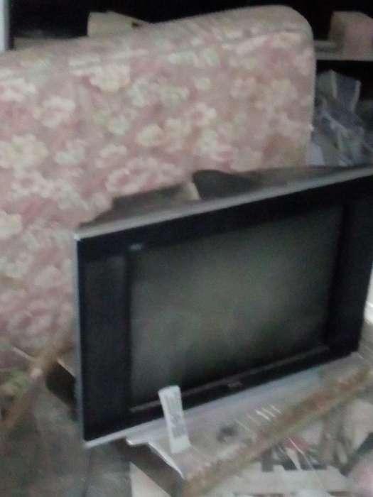 Tv 29 Pulgadas Pantalla Plana con Contro