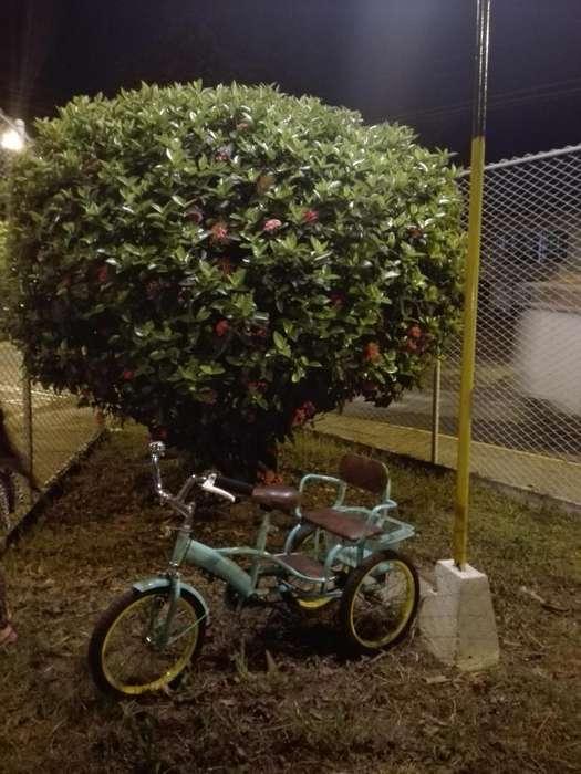 Nia triciclo