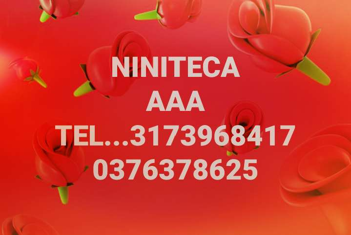 alquiler de sonido minitk mimiteca minitecas bafles aaa 3173968417