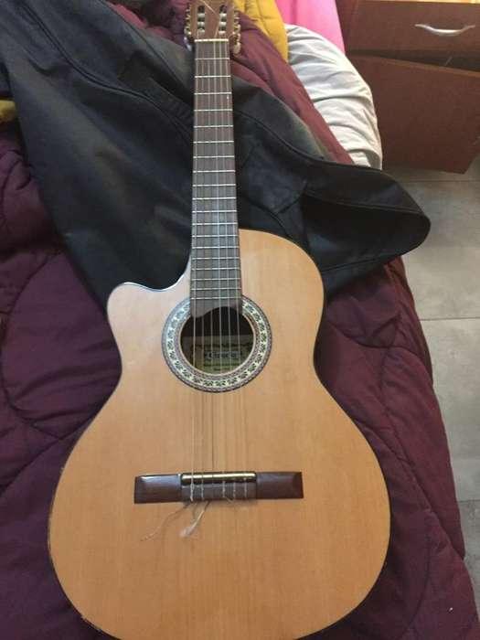 Guitarra Gracia wilde jr eq. permuto