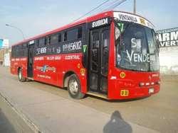 Bus International 2008