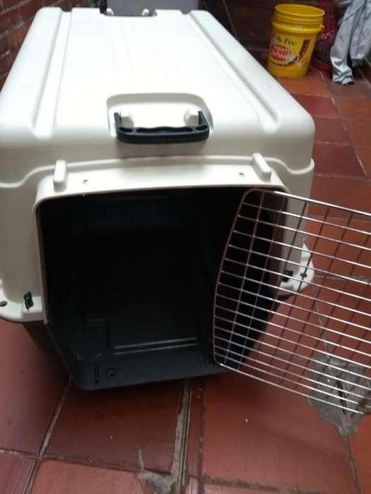 Guacal Para Perro De 57x78x65 Usado
