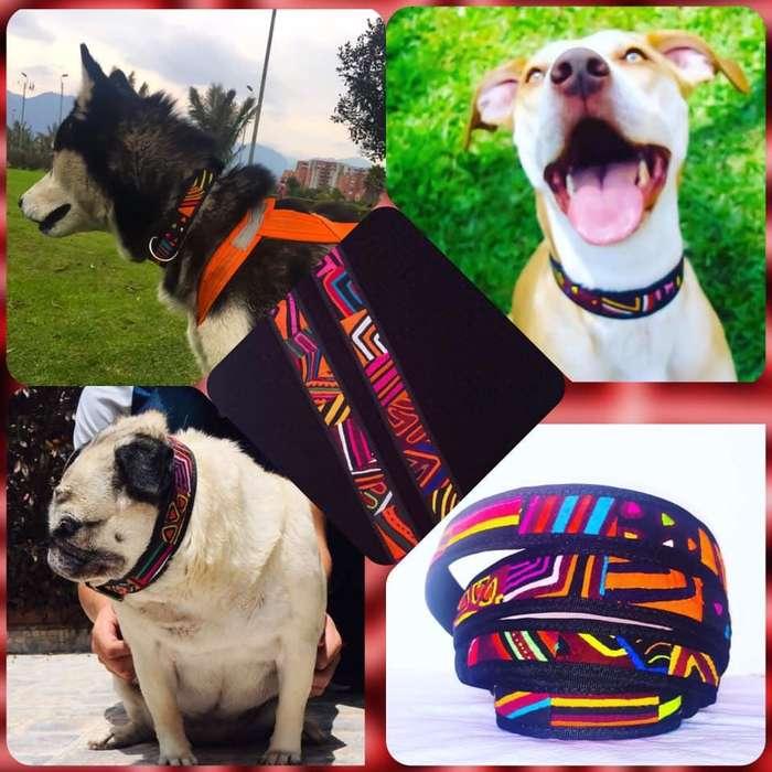 Collares para Mascotas artesanales / Perros / Gatos / Accesorios