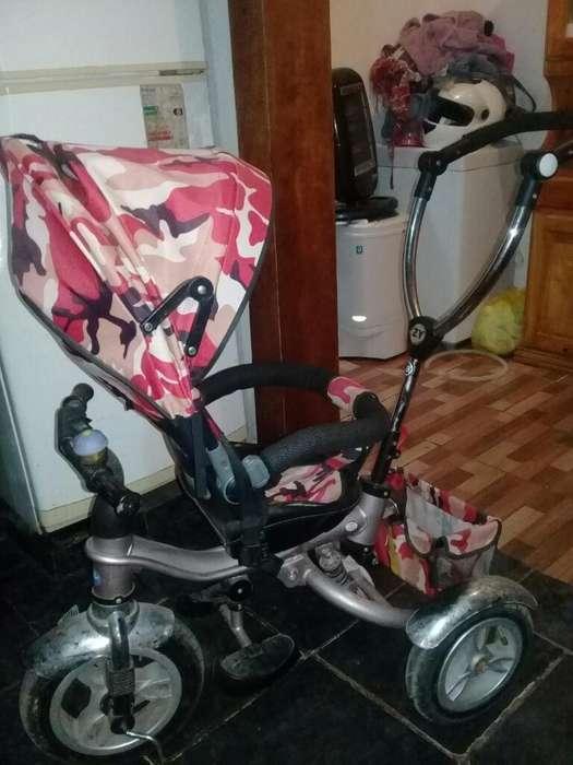 Vendo Paseador de Bebés