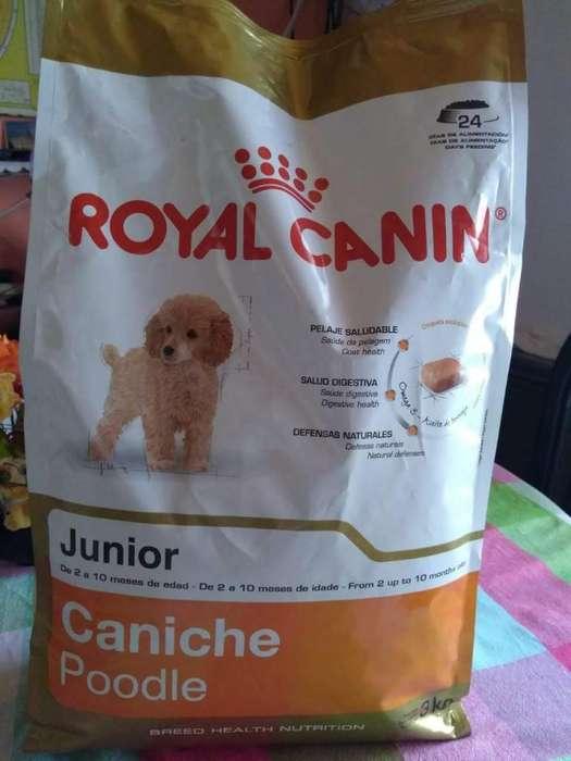 Alimento Royal Canin