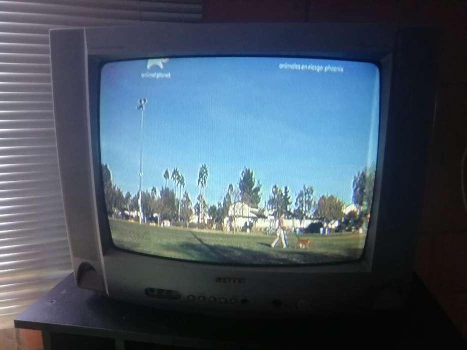 Televisor 21 Pulgadas con Control