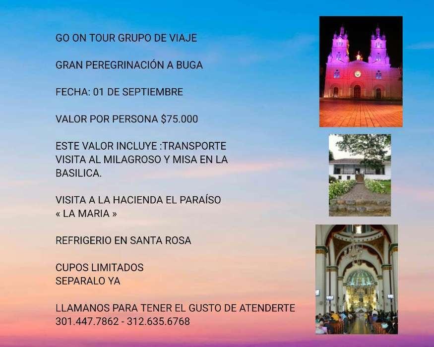 Salida a Basílica de Buga