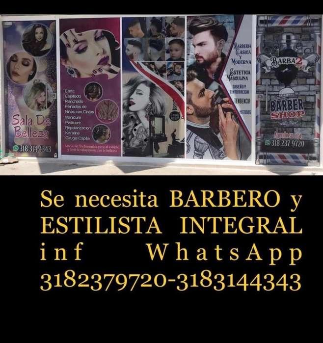 Barbero Y Estilista