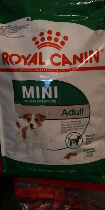 Royal Canin 4 Kg Mini Adulto Super Premi