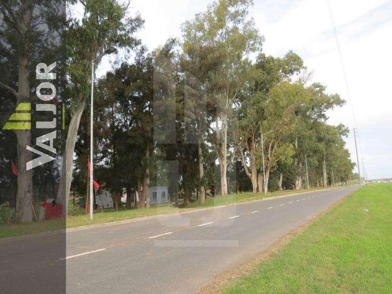 2 Fracciones el Block 13140m2 Sobre Ruta Panameriacana Km 60