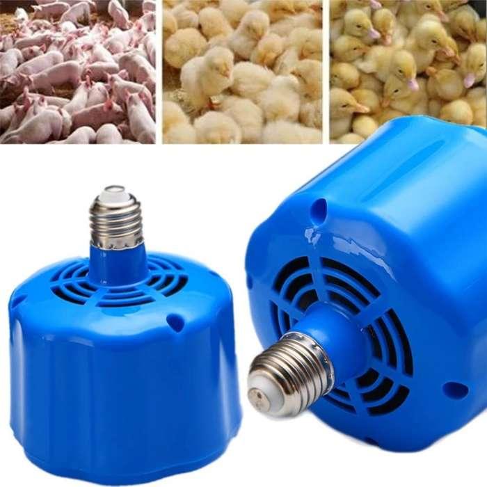 Calefactor para Incubadora Criadora