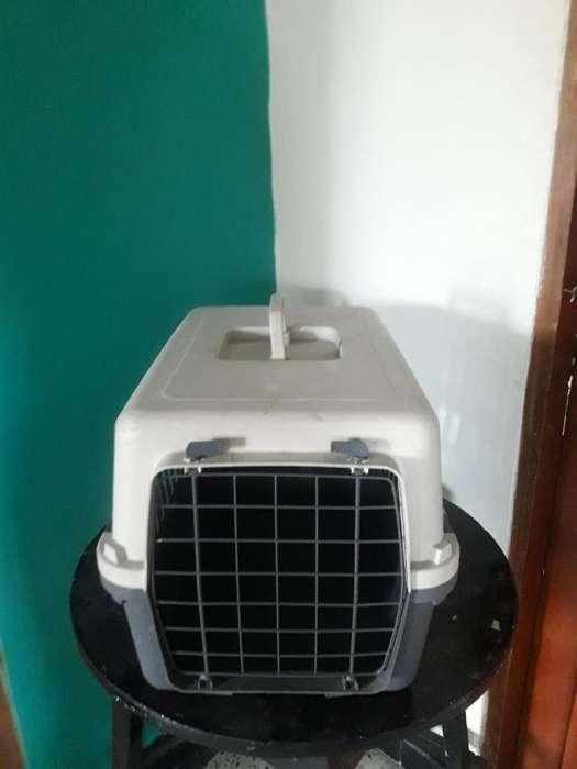 Caja para <strong>perros</strong> Pequeños Y Gatos