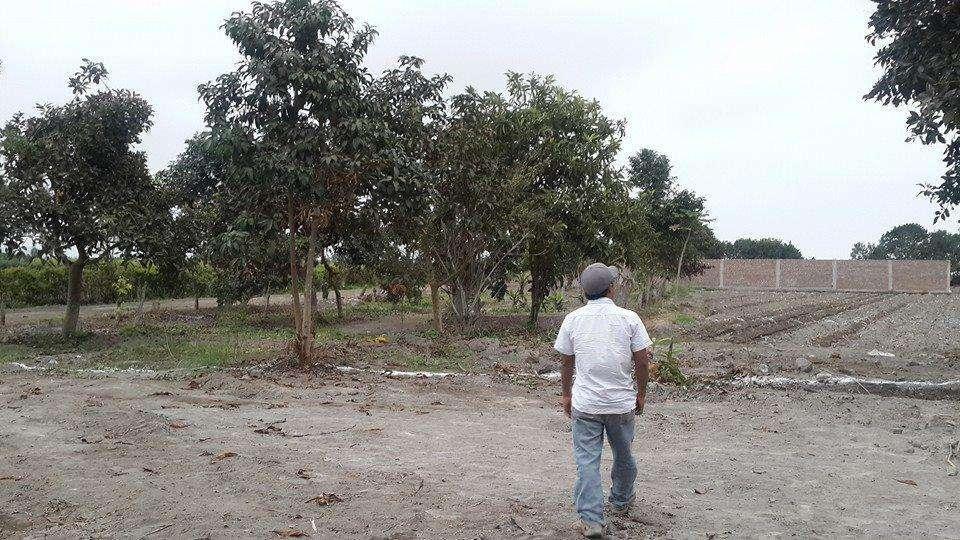 Inmejorable Ocasión de adquirir un Terreno de 3,000 M2 Ideal para casa de campo, almacenes, plantaciones,