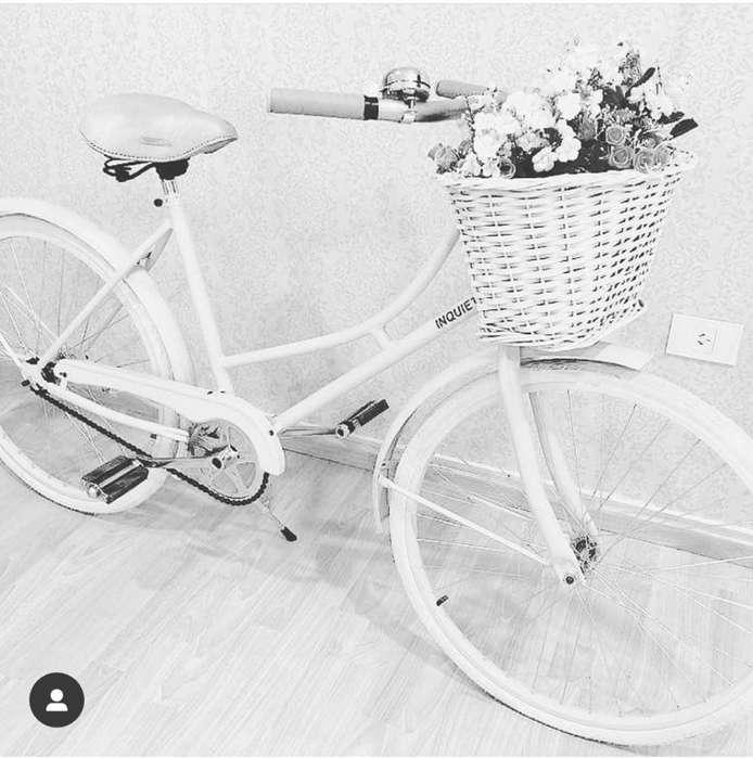 Bicicleta Modelo Florenza Inquieto