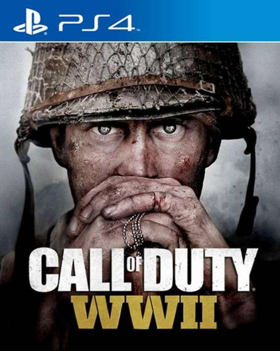 Call Of Duty Ww2 Play Station 4