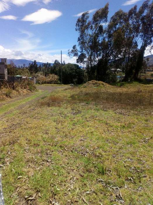 terreno de 2.500mts en cevallos sector santo domingo